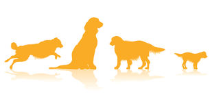 Dog silhouettes Royalty Free Stock Photos