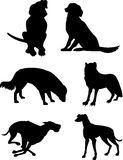 Dog silhouettes Stock Images