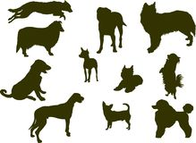 Dog silhouettes. Dog silhouette collection. Vector Illustration Royalty Free Stock Image