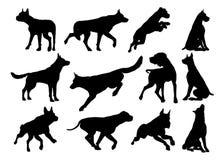 Dog Silhouettes Animal Set stock illustration