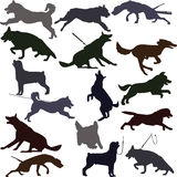 Dog silhouettes illustration. Royalty Free Stock Images