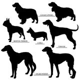 Dog silhouettes set. Outline and silhouette vector royalty free illustration