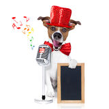 Dog singing with microphone. Jack russell dog , singing a karaoke song or reading the news using a retro mic or microphone,behind blank empty blackboard or Royalty Free Stock Photo