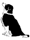 Dog in sit position Royalty Free Stock Photos