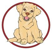 Dog sit in red round road sign Stock Image