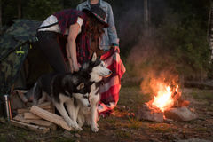 Dog sits by the fire with the hosts and Husky Stock Photography