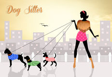 Dog sitter Stock Images