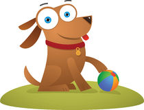 Dog sitting with a ball Royalty Free Stock Photos