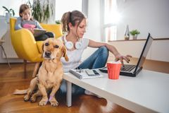 Dog sitting on the floor by the woman stock images