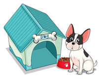 A dog sitting in front of the blue doghouse Stock Photos