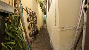 Vintage Pastel Narrow Alley Between Walls with Dog Sitting in the Middle royalty free stock photo