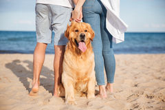Dog sitting near young couple on beach Stock Photography