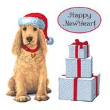 Dog sitting in Santar hat next to gift. Golden Cocker Spaniel Dog sitting in Santa hat next to gift. Vector Stock Images