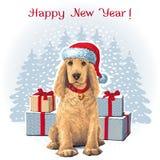 Dog sitting in Santar hat next to gift. Golden Cocker Spaniel Dog sitting in Santa hat next to gift. Vector Stock Photos