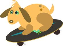 Dog Skateboard Rider Royalty Free Stock Photography