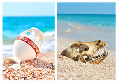 Dog skull and vase on the beach Royalty Free Stock Images