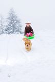 Dog sled Stock Photography