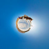 Dog sled stereographic little planet Stock Photos