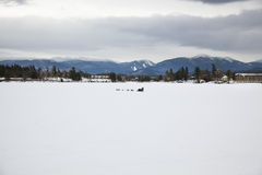Dog Sledding on the frozen lake Stock Photos