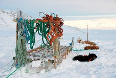 Dog sledge. An inuit dog sledge in snow royalty free stock photo