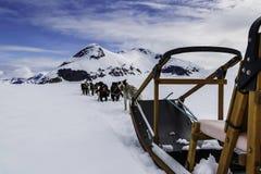 Dog sledging trip Stock Photo