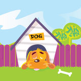 Dog sleeping in dog house Royalty Free Stock Photography