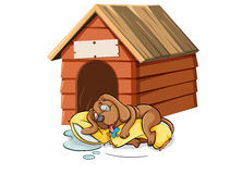 Dog sleeping in the doghouse Royalty Free Stock Image