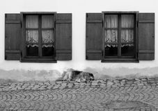 Dog sleeping between two windows. Dog in sleeping mood in a summer afternoon in an old city stock images
