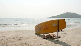 Dog sleeping under Surf Rescue surfboard stock video footage