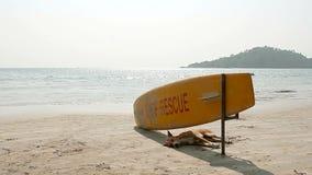 Dog sleeping under Surf Rescue surfboard stock footage