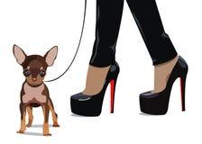 Dog  small drawing women foot Royalty Free Stock Photo