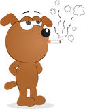 Dog Smoking Royalty Free Stock Image
