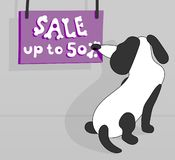 The dog sniffs an ad. Inscription sale up to 50 % Inscription in the form of bones for dogs Royalty Free Stock Image