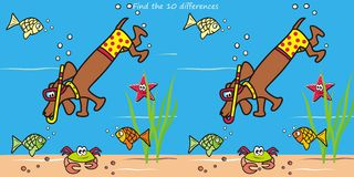 Dog and snorkel, find ten differences Royalty Free Stock Images