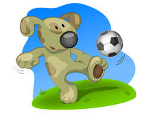 Dog the soccer player Royalty Free Stock Photo