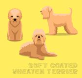 Dog Soft Coated Wheaten Terrier Cartoon Vector Illustration. Animal Coloring EPS10 File Format Stock Photography
