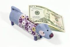 Dog a souvenir with a coin box for money stock photo