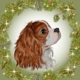 Dog spaniel New Year 2018. Vector realistically painted dog of the breed Cavalier King Charles spaniel in the frame of the New Year`s wreath, congratulations on Royalty Free Stock Images