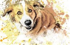 Dog, spray paint, painted. Drawing dog pencil, paints, splashes on white background Stock Photo