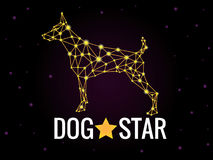 Dog star Royalty Free Stock Photos