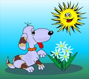 Dog and sun Royalty Free Stock Images