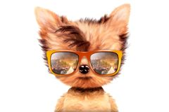 Dog in sunglasses isolated on white background. Funny adorable dog wearing sunglasses isolated on white background. Holiday and vacation concept. Realistic 3D stock illustration