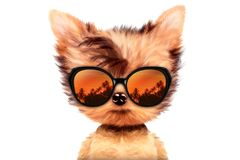 Dog in sunglasses isolated on white background. Funny adorable dog wearing sunglasses isolated on white background. Holiday and vacation concept. Realistic 3D Royalty Free Stock Photo