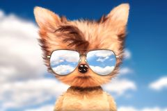 Dog in sunglasses stand in front travel background. Funny adorable dog wearing sunglasses and stand in front travel background. Holiday and vacation concept Royalty Free Stock Image