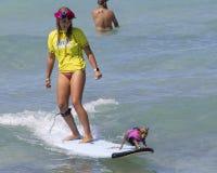 Dog Surfing In Waikiki