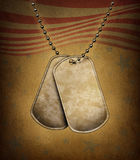 Dog Tags Grunge Stock Images