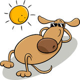 Dog taking sunbath cartoon illustration Stock Image