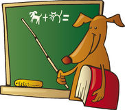 Dog teacher. Cartoon illustration of dog teacher with book and board Royalty Free Stock Image