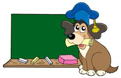 Dog teacher with blackboard Royalty Free Stock Image