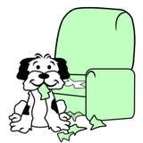 Dog Tearing Up Sofa Chair stock photos